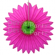 Cerise and Lime Fanburst Decoration (12 pcs)